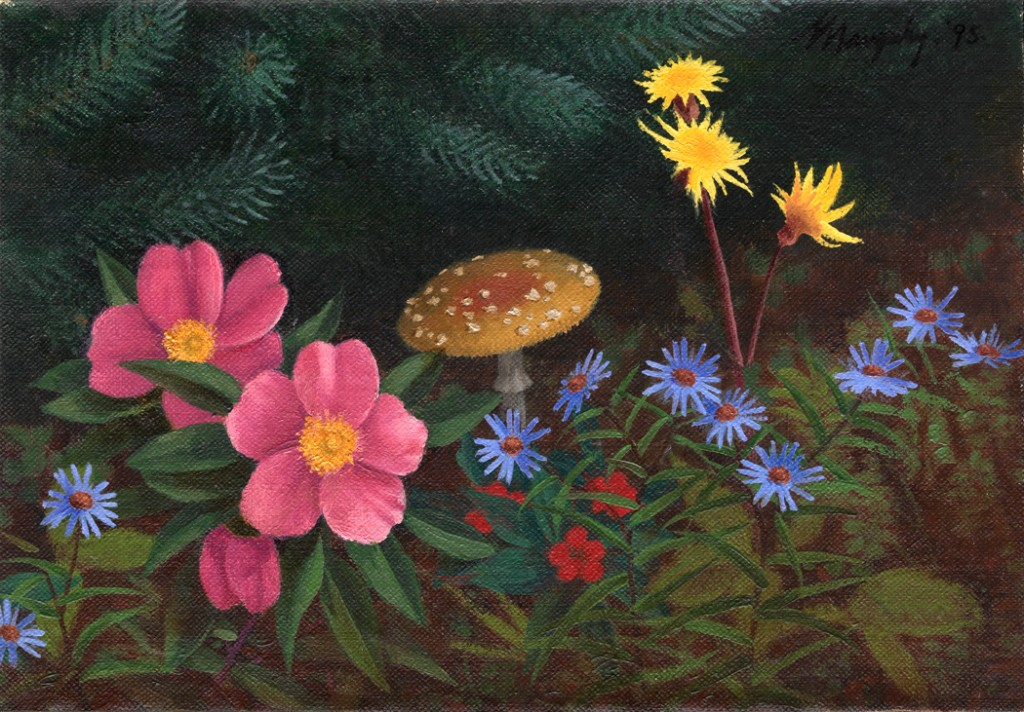 Forest Flowers And Mushroom